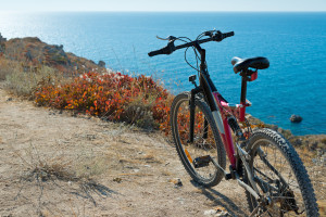 Bicycle on coastline